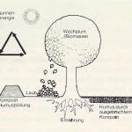 Abb. 3: Schema: Der natürliche Stoffkreislauf ist in der Stadt vielfach unterbrochen, weil ein großer Teil des Bodens abgedichtet ist. Aber man kann diesen wichtigen Kreislauf nachvollziehen, indem man die organischen Abfälle kompostiert, statt sie zu verbrennen oder wegzuwerfen. (Entnommen aus: Schreiber, R., 1982)